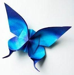 kupu kupu biru dari kertas 2021